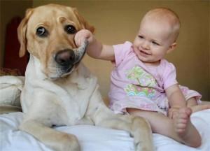 Аллергия на собак у детей симптомы