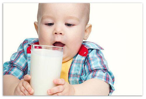 Можно ли давать коровье молоко грудничку